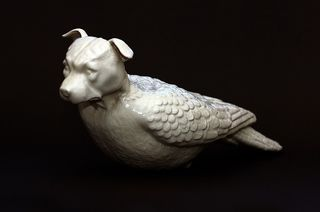Dog-pigeon