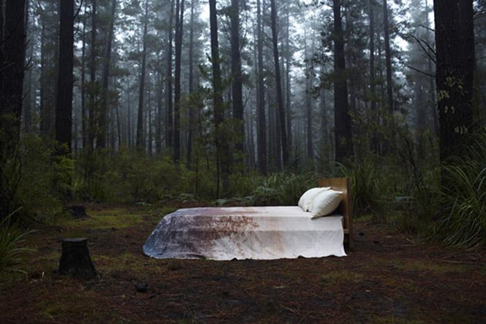 Pony Rider Beds_0027_1